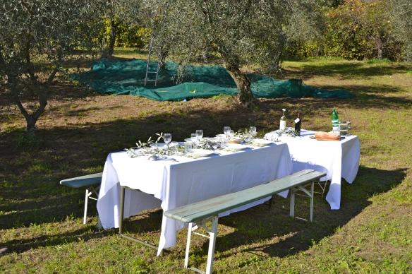 Lunch tijdens oogst